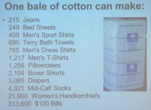 Cotton Bale facts