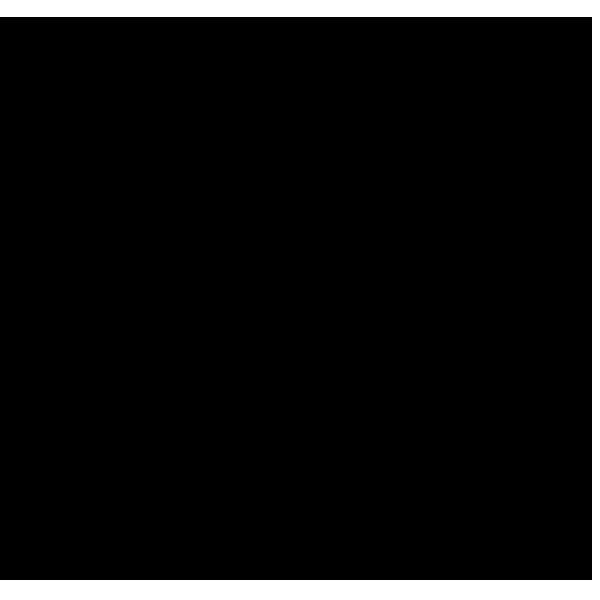 sslogo-black-transparent.png